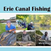 Erie Canal Offers Fine Fishing