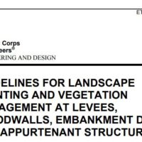 Guidelines for Vegetation on Embankment Dams